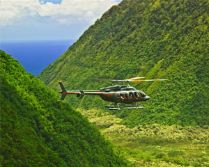 Maverick helicopters discount coupons